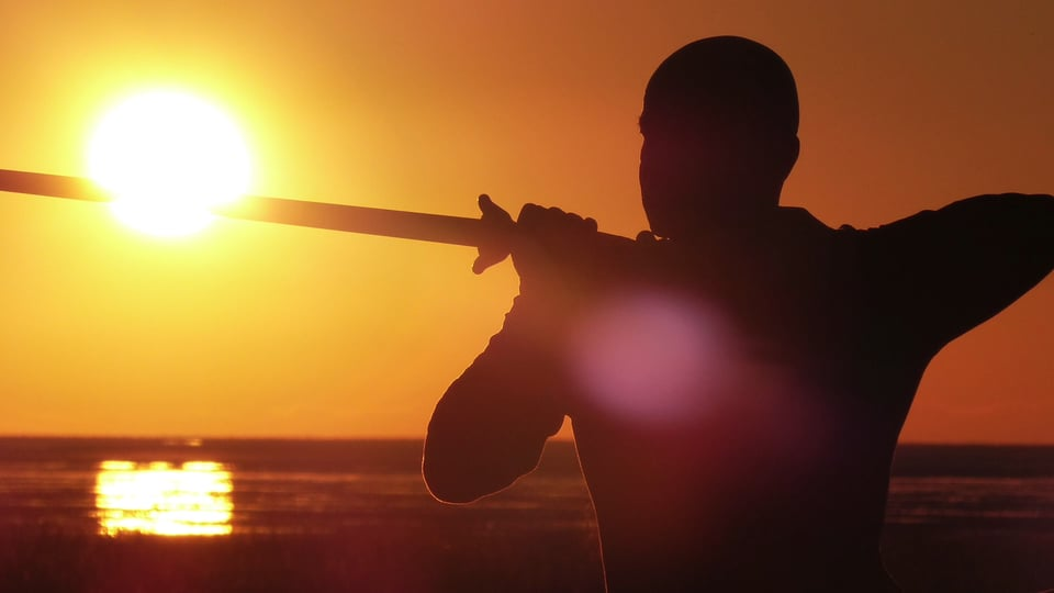 Schwertform Yang Stil
